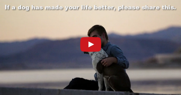 Pets Tranform Lives