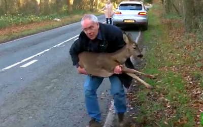 Deer Rescue – One Man's Passion Brought To Life!